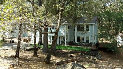 Colfax Single Family Home For Sale: 1370 Eden Forest Drive