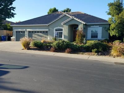 Folsom Single Family Home For Sale: 1018 Brock Circle
