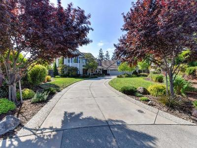 Roseville Single Family Home For Sale: 202 Golden Hill Court