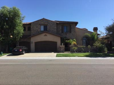 Manteca Single Family Home For Sale: 4060 Chiavari Way