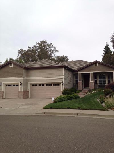 Auburn Single Family Home For Sale: 1194 Humbug Way