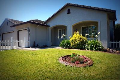 East Nicolaus, Live Oak, Meridian, Nicolaus, Pleasant Grove, Rio Oso, Sutter, Yuba City Single Family Home For Sale: 696 Tulsa Drive