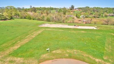 Auburn Residential Lots & Land For Sale: 2280 Vineyard Estates Court