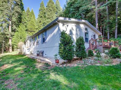 Camino Single Family Home For Sale: 5296 Andrews Lane