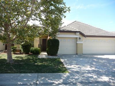 Elk Grove Single Family Home For Sale: 9904 Sorrentino Drive