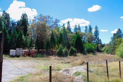 Nevada County Residential Lots & Land For Sale: 27994 Cemetery Alley