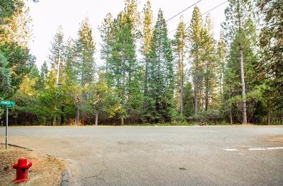 Grizzly Flats Residential Lots & Land For Sale: 5435 Blue Mountain Drive
