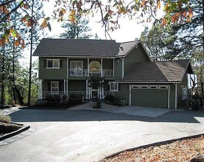 Grass Valley Single Family Home For Sale: 17337 Round Valley Circle