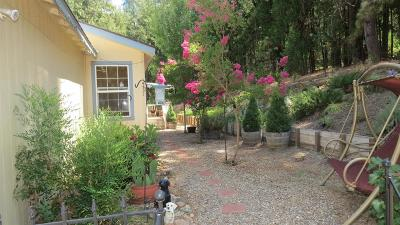 Amador County Single Family Home For Sale: 19521 Fiddletown Rd.