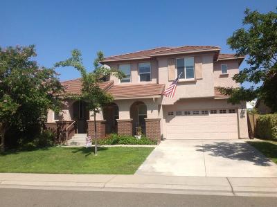 Rancho Cordova Single Family Home For Sale: 11033 Fiore Drive