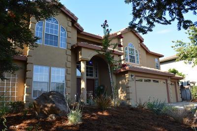 Davis Single Family Home For Sale: 3424 Seabright Avenue