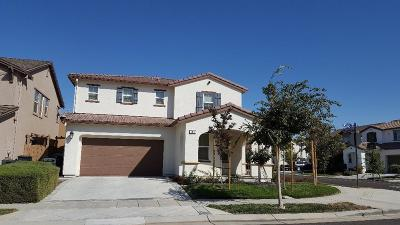 Mountain House Single Family Home For Sale: 708 North Ortega Drive