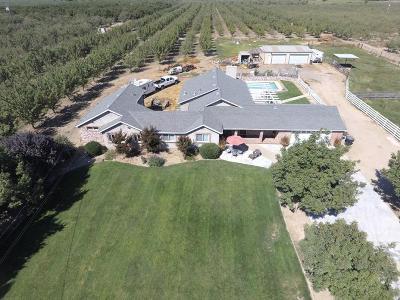 Stanislaus County, San Joaquin County Single Family Home For Sale: 28729 Orange Avenue