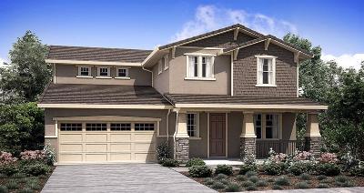 Rancho Cordova Single Family Home For Sale: 3561 Edington Drive