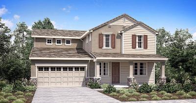 Rancho Cordova Single Family Home For Sale: 12698 Thornberg Way