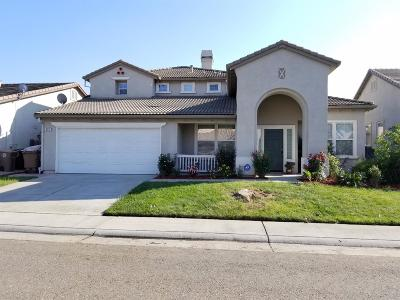Elk Grove Single Family Home For Sale: 8717 Blue Maiden Way