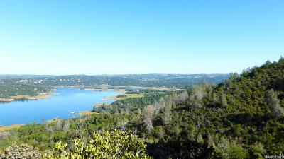 Pilot Hill Residential Lots & Land For Sale: Rattle Snake Bar Road