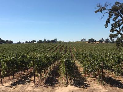 San Joaquin County Commercial Lots & Land For Sale: 19301 Clements Road