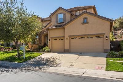 El Dorado Hills Single Family Home For Sale: 2072 Lamego Way