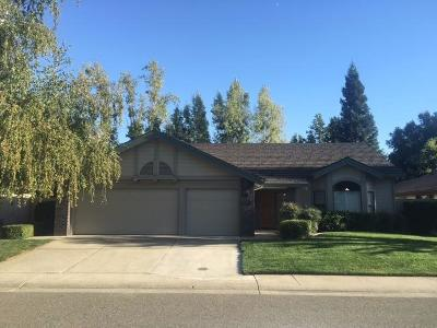 Gold River Single Family Home For Sale: 11852 South Carson Way