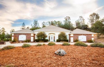 Placerville Single Family Home For Sale: 3093 Roughrider Court
