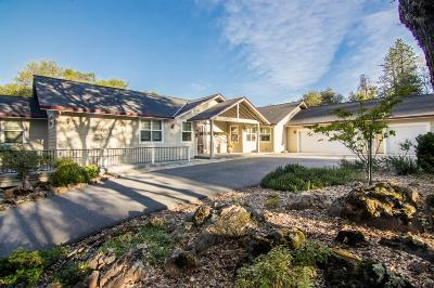 Grass Valley Single Family Home For Sale: 10830 Arianna Court