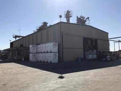 Turlock Commercial For Sale: 19835 Fowler Avenue