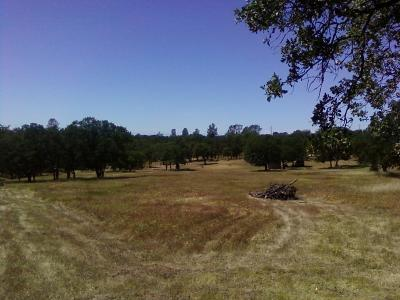 Butte County Residential Lots & Land For Sale: Reginald Way