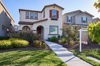 Mountain House Single Family Home For Sale: 142 Kinross Way