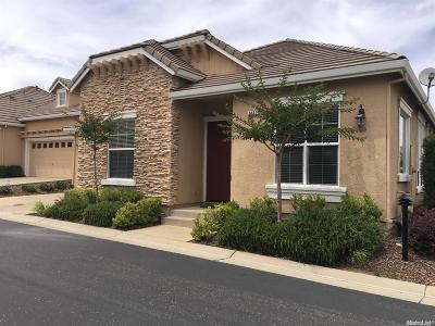 El Dorado Hills Single Family Home For Sale: 3827 Park Drive