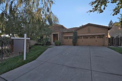 Sacramento Single Family Home For Sale: 904 Sierra Park