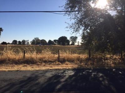 Elk Grove, Galt Residential Lots & Land For Sale: Point Pleasant Road