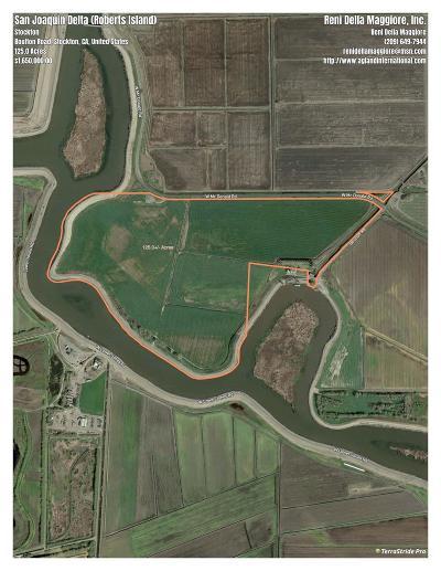 Stockton, Lodi Residential Lots & Land For Sale: 401 Boulton Road