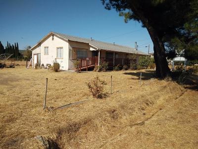 Elk Grove Single Family Home For Sale: 8416 West Stockton Boulevard