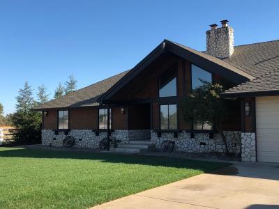 Elk Grove Single Family Home For Sale: 10004 Calvine Road