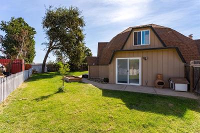 Lodi Single Family Home For Sale: 17220 Pony Lane