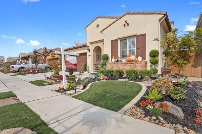Stockton, Lodi Single Family Home For Sale: 3043 Radiance Street