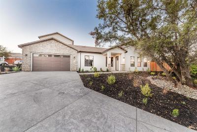 Auburn Single Family Home For Sale: 1101 Sluice Box Circle