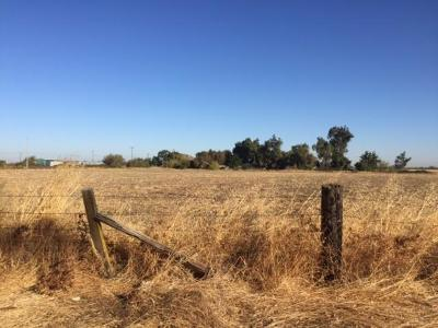 Elk Grove Residential Lots & Land For Sale: Point Pleasant Road