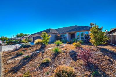 Orangevale Single Family Home For Sale: 9575 Sprow Ranch Lane