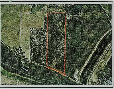 Sutter County Commercial Lots & Land For Sale: 6862 Garden Highway