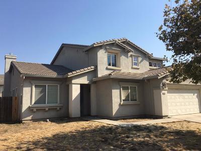 Stockton, Tracy, Elk Grove, Manteca, Lodi, Mountain House, Modesto, Galt, French Camp, Ripon, Salida Single Family Home For Sale: 9676 Colonna Lane
