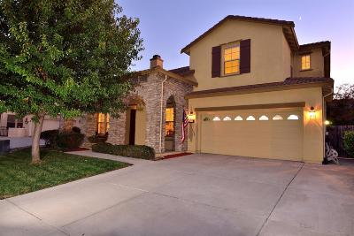 Elk Grove Single Family Home For Sale: 5412 Dutch Iris Court