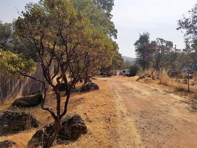Bangor, Berry Creek, Chico, Clipper Mills, Gridley, Oroville Single Family Home For Sale: 178 Crystal Pines Road