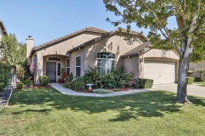 Manteca Single Family Home For Sale: 1308 Primavera Avenue