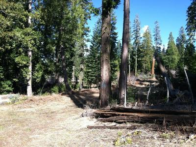 Nevada County Residential Lots & Land For Sale: 10445 Crystal Lakes Road