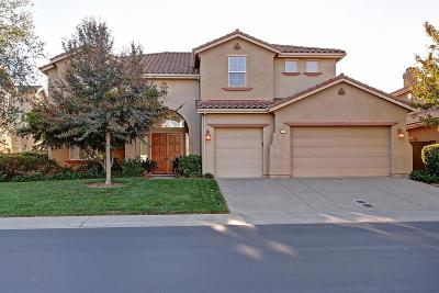 El Dorado Hills Single Family Home For Sale: 1300 Souza Drive