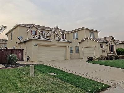 Elk Grove, Galt Single Family Home For Sale: 10054 Corton Way