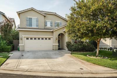 Roseville Single Family Home For Sale: 132 Paradise View Court