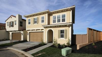 El Dorado Hills Single Family Home For Sale: 3955 Beatty Drive